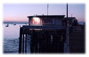 Patriots Sportfishing building at sunset